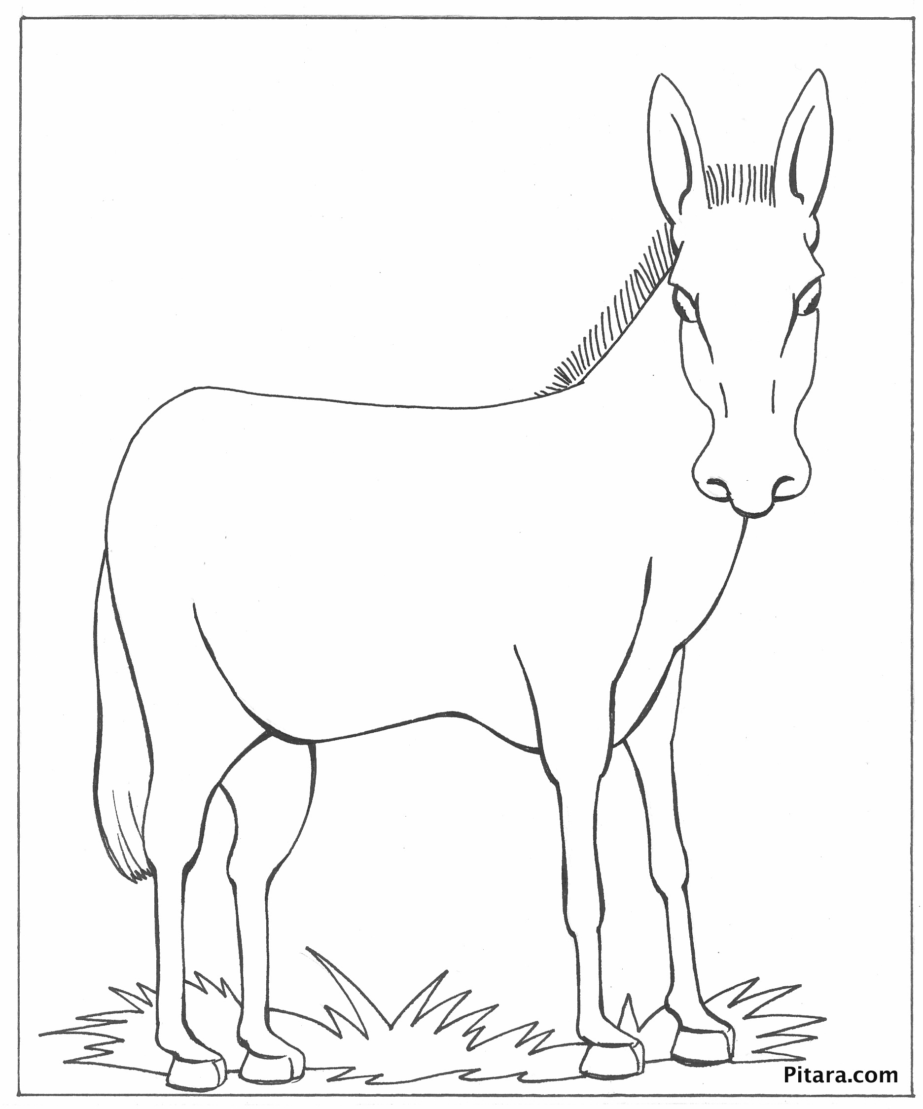 donkey colouring pages donkey coloring page pitara kids network colouring donkey pages