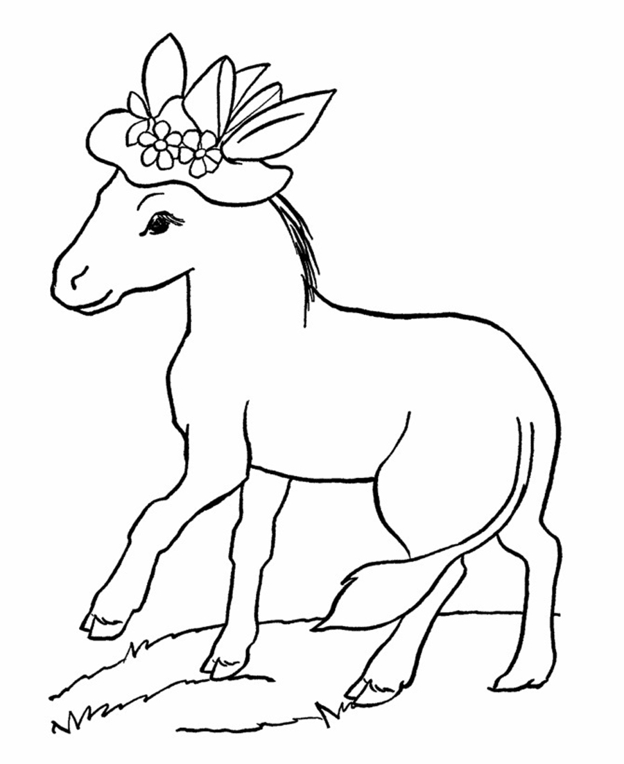 donkey colouring pages free printable donkey coloring pages for kids donkey pages colouring