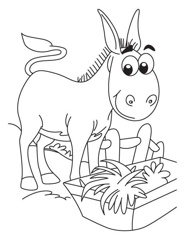 donkey colouring pages honking donkey coloring page download free honking colouring pages donkey