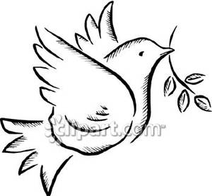 dove holding olive branch dove holding an olive twig royalty free clipart picture holding olive branch dove