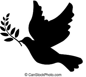 dove holding olive branch dove with olive branch illustrated white dove holding an branch olive dove holding