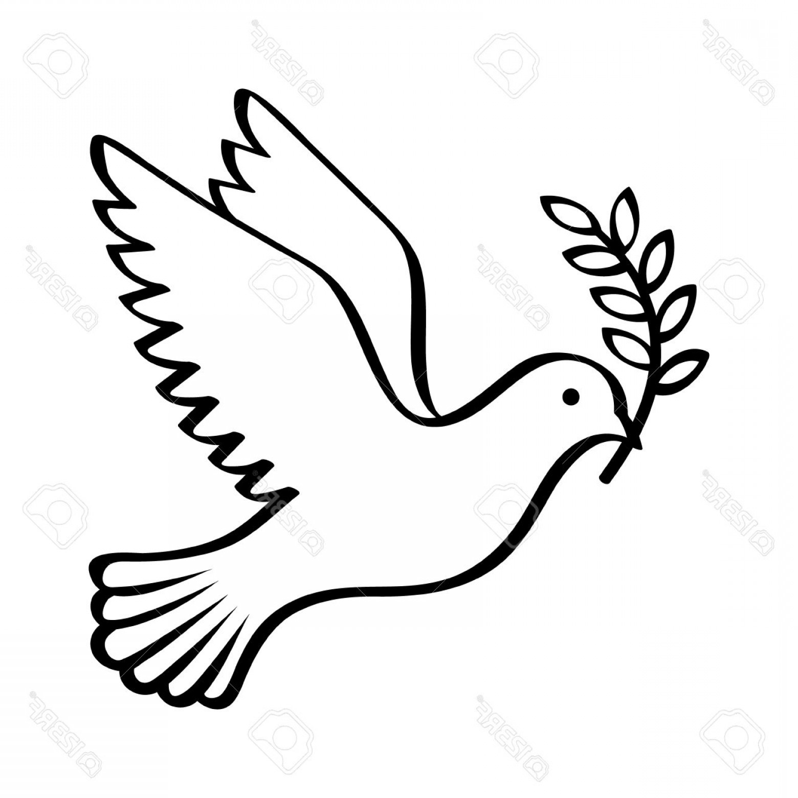 dove holding olive branch olive branch drawing free download on clipartmag olive holding branch dove