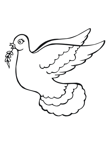 dove holding olive branch picture of dove with olive branch free download on olive dove branch holding