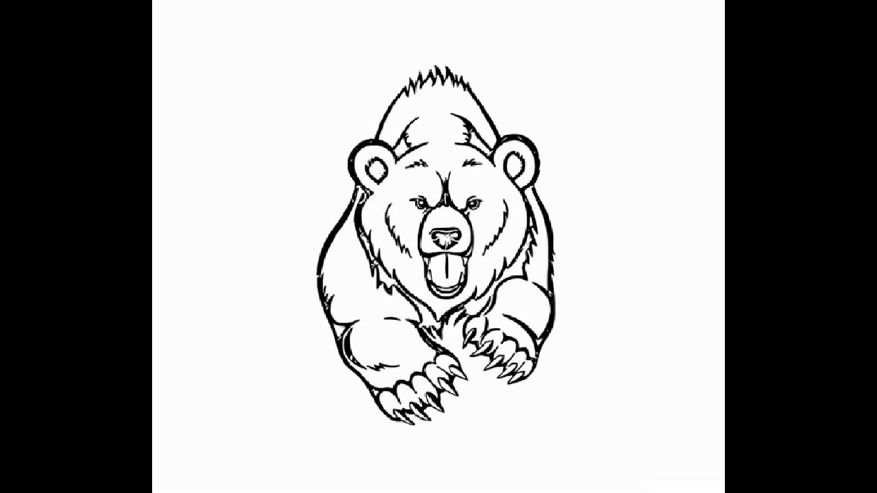 draw grizzly bear how to draw a bear face grizzly bear step by step draw grizzly bear