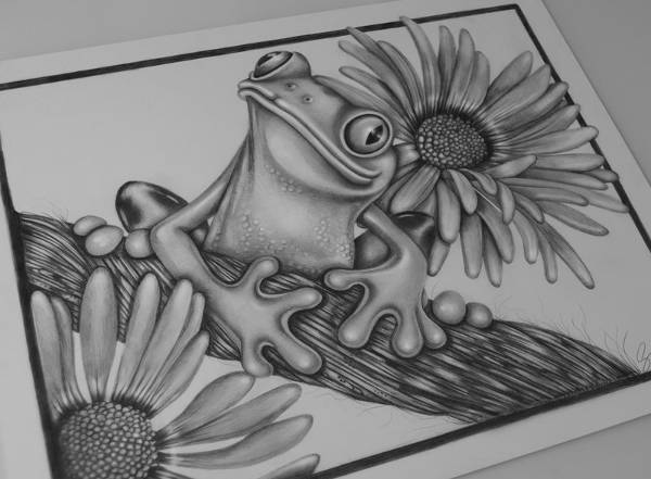 drawing frogs realistic frog drawing at getdrawings free download frogs drawing