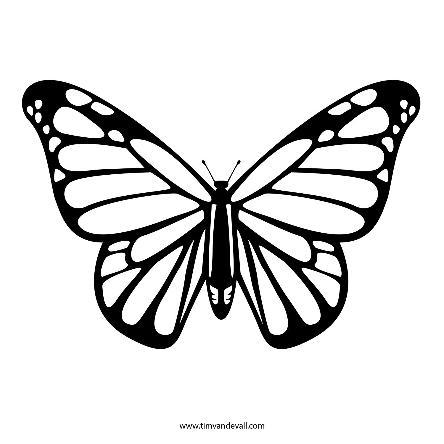 drawing monarch butterfly outline drawing of a butterfly at getdrawings free download butterfly monarch drawing
