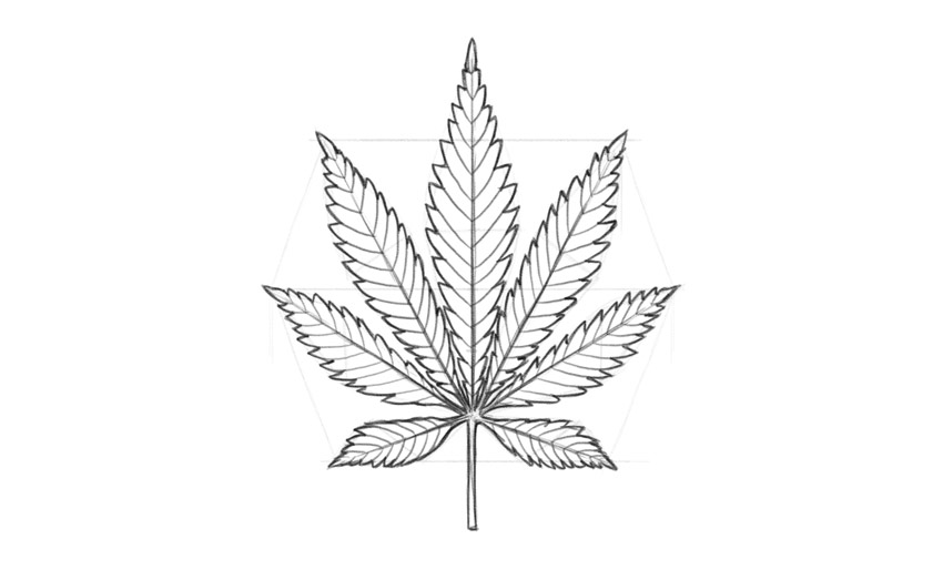 drawing of pot leaf how to draw a pot leaf leaf drawing of pot