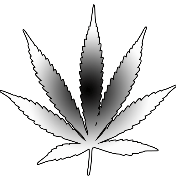 drawing of pot leaf marijuana leaves drawings quoteko clipart best of drawing pot leaf