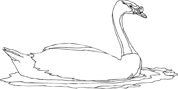 duck duck goose coloring pages cute little duck coloring page netart goose pages coloring duck duck