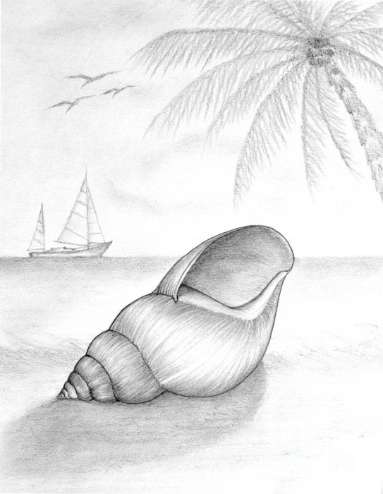 easy to draw beach scene beach drawing black and white at getdrawings free download scene draw beach to easy