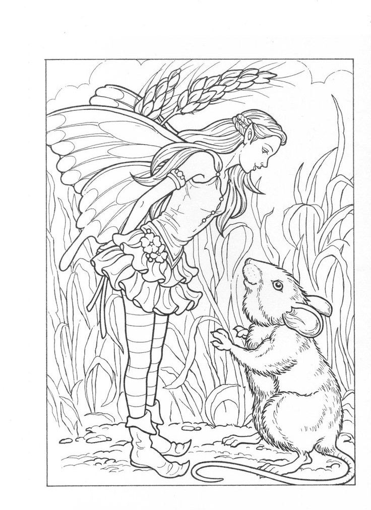 fairy horse coloring pages pin by vero on dessins fairy coloring pages fairy coloring fairy horse pages