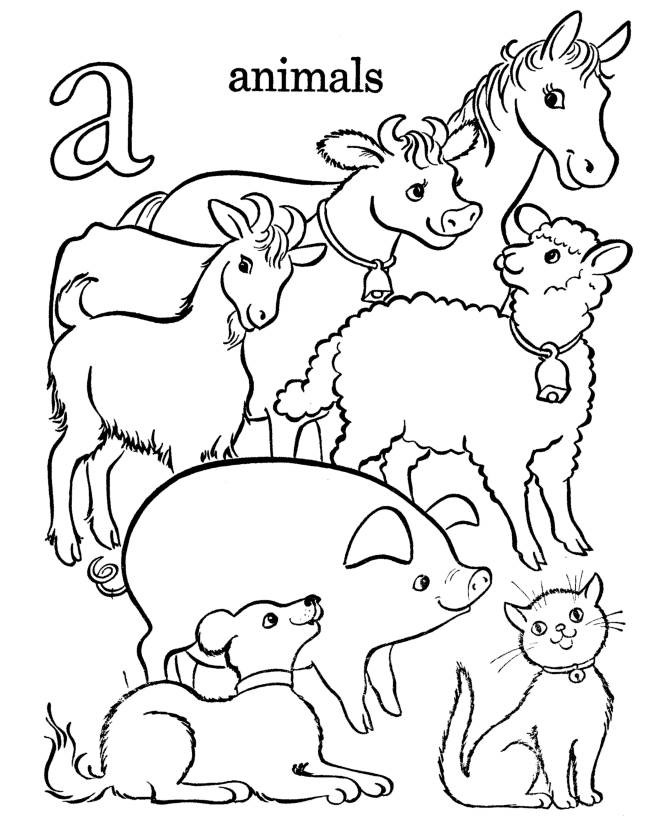 farm animals for coloring farm animal coloring pages to download and print for free coloring for farm animals