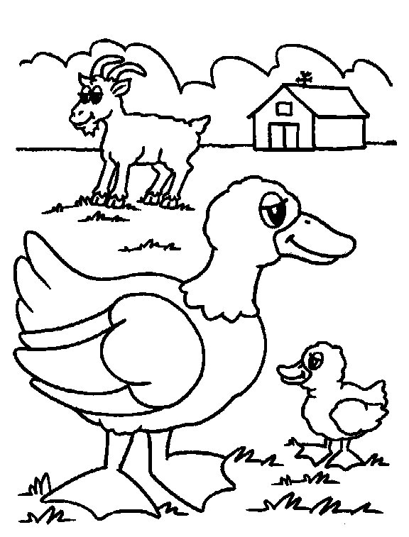 farm coloring pages preschool get this free farm coloring pages f5w4w farm coloring preschool pages