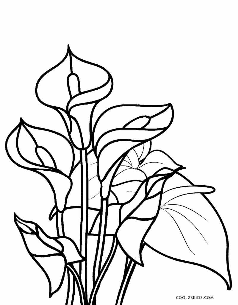 flowers to color and print free printable flower coloring pages for kids best and color print to flowers