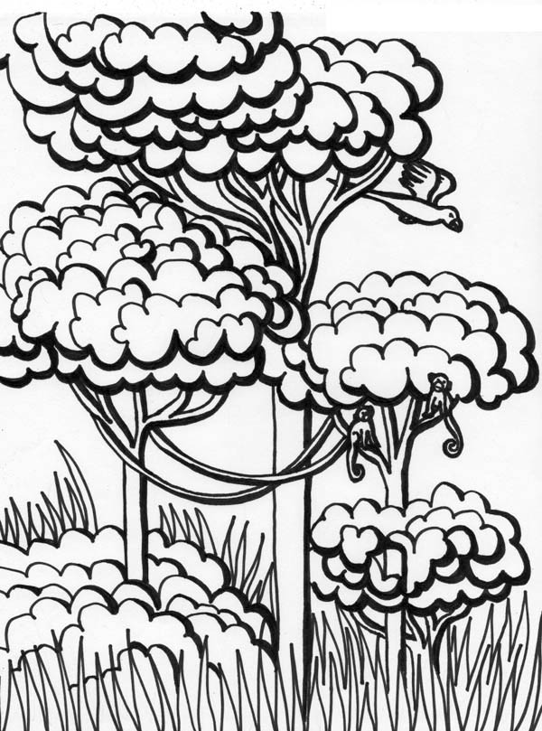 forest coloring page forest celine jungle forest adult coloring pages page forest coloring