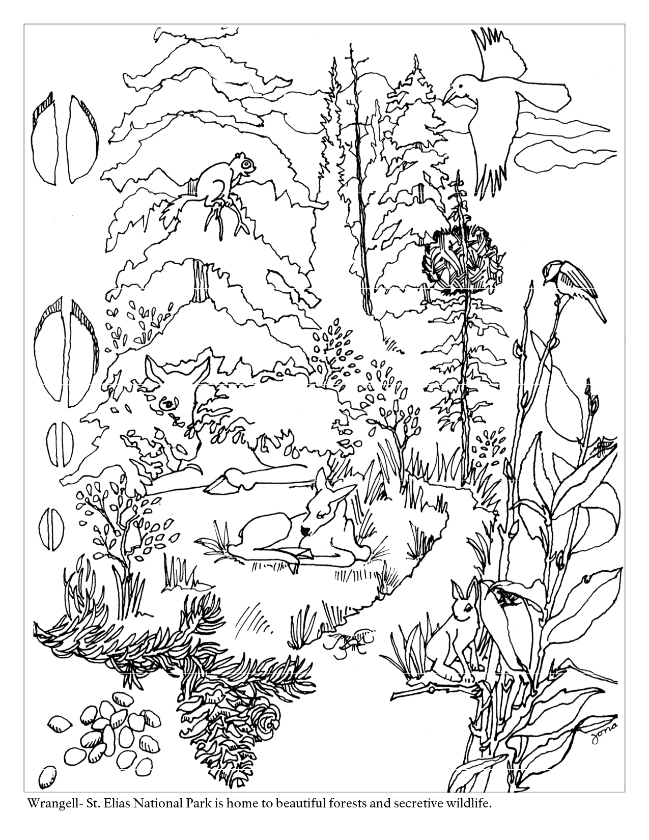 forest coloring page forest coloring pages download and print forest coloring forest coloring page