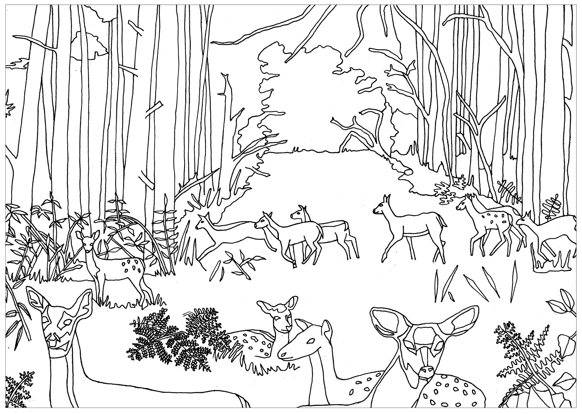 forest coloring page forest coloring pages download and print forest coloring forest page coloring