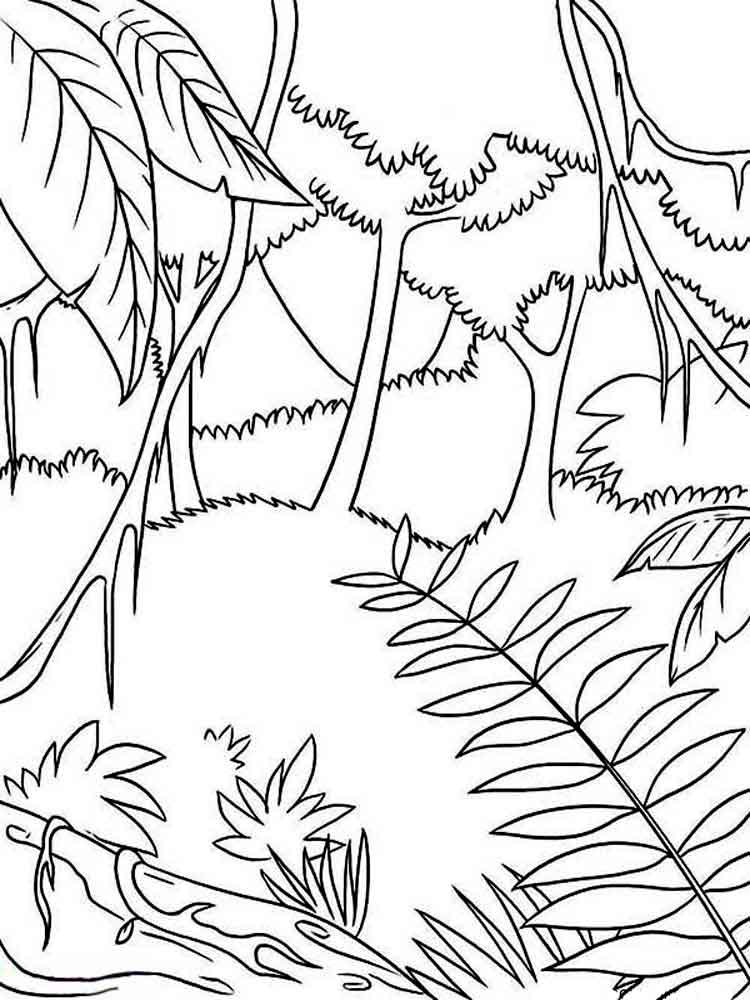 forest coloring page forest coloring pages printable coloring home page forest coloring