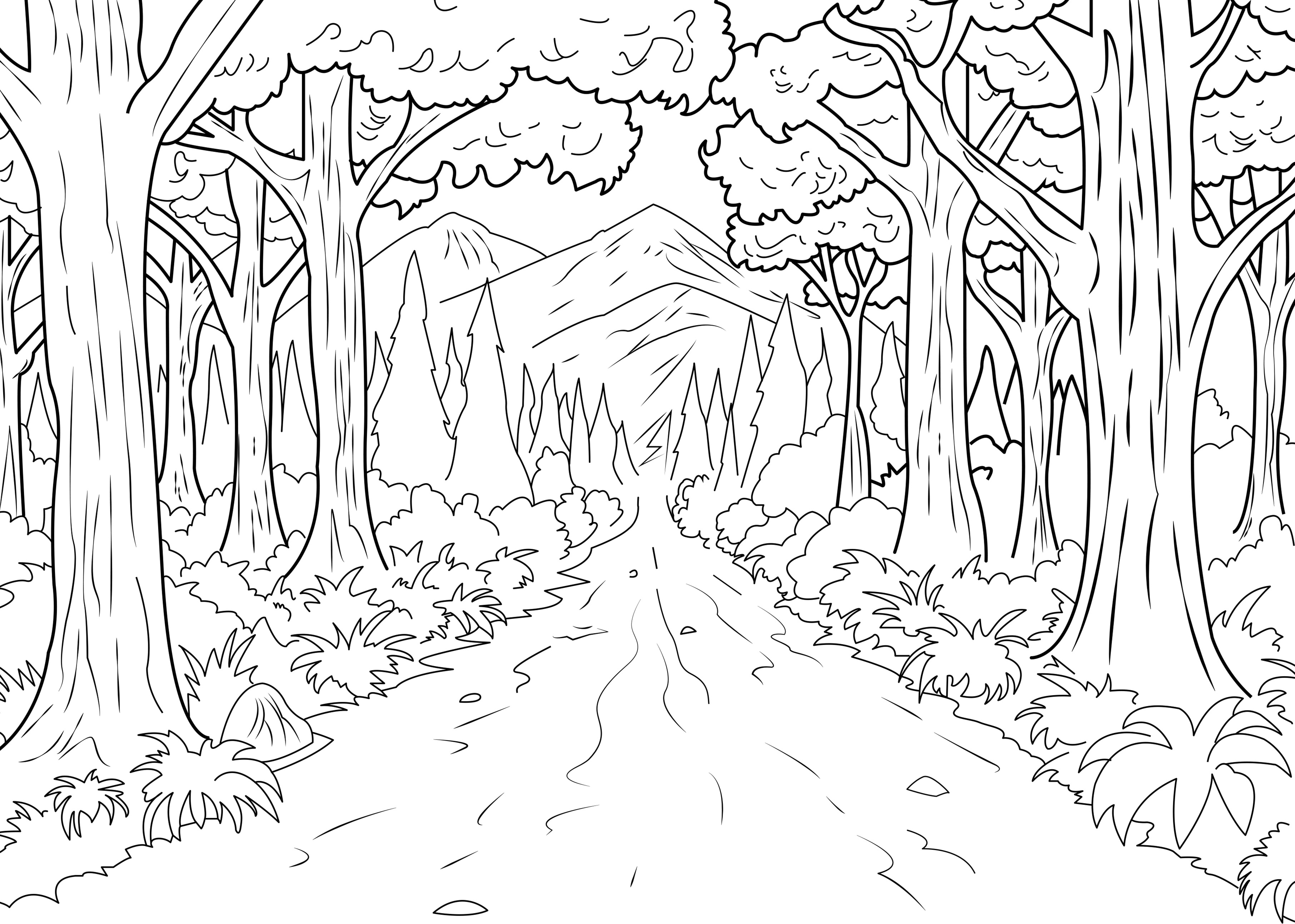 forest coloring page open season in forest coloring pages for kids printable free forest coloring page