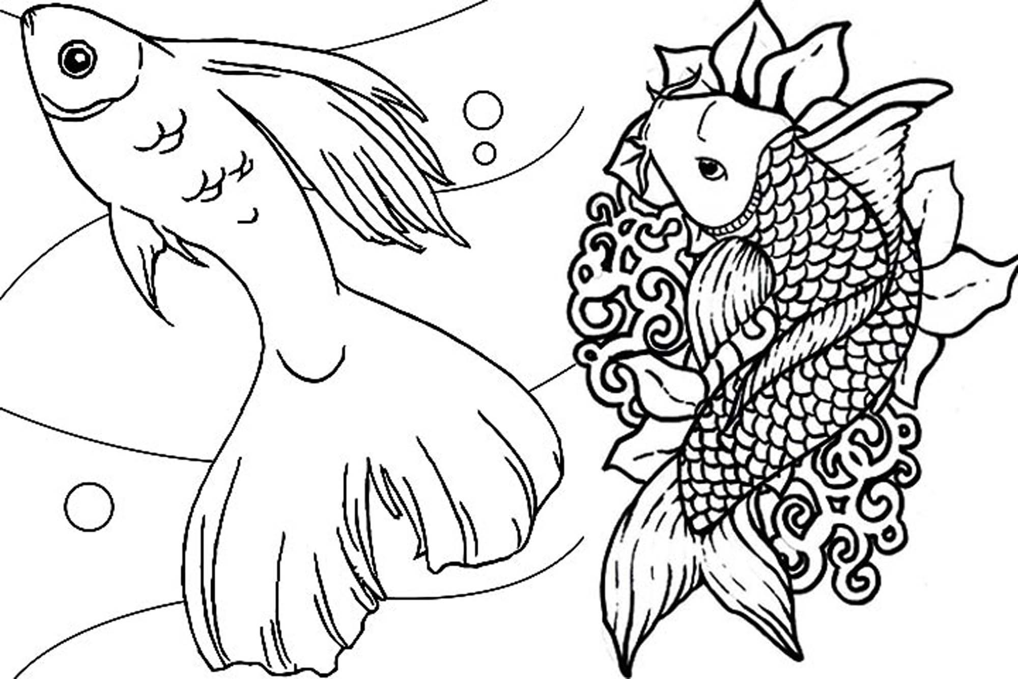 free coloring pages fish free fish coloring pages for kids pages fish coloring free