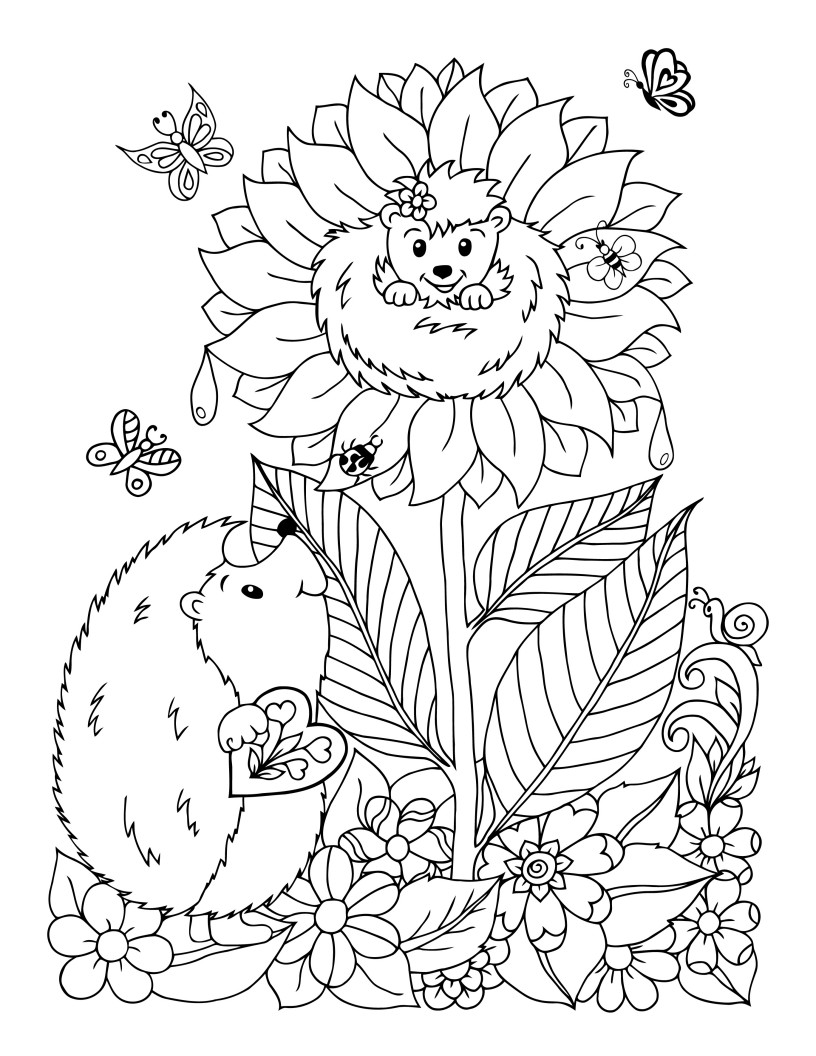 free hedgehog coloring pages free coloring page hedgehogs family parenting coloring hedgehog pages free