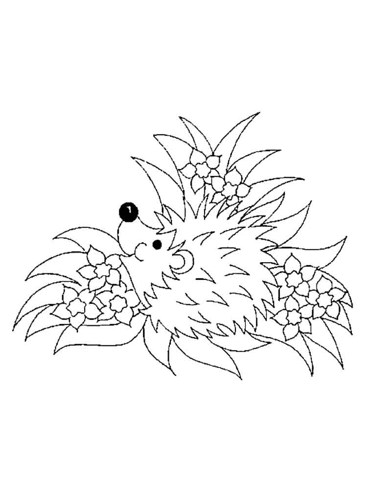 free hedgehog coloring pages hedgehog coloring pages download and print hedgehog coloring hedgehog free pages