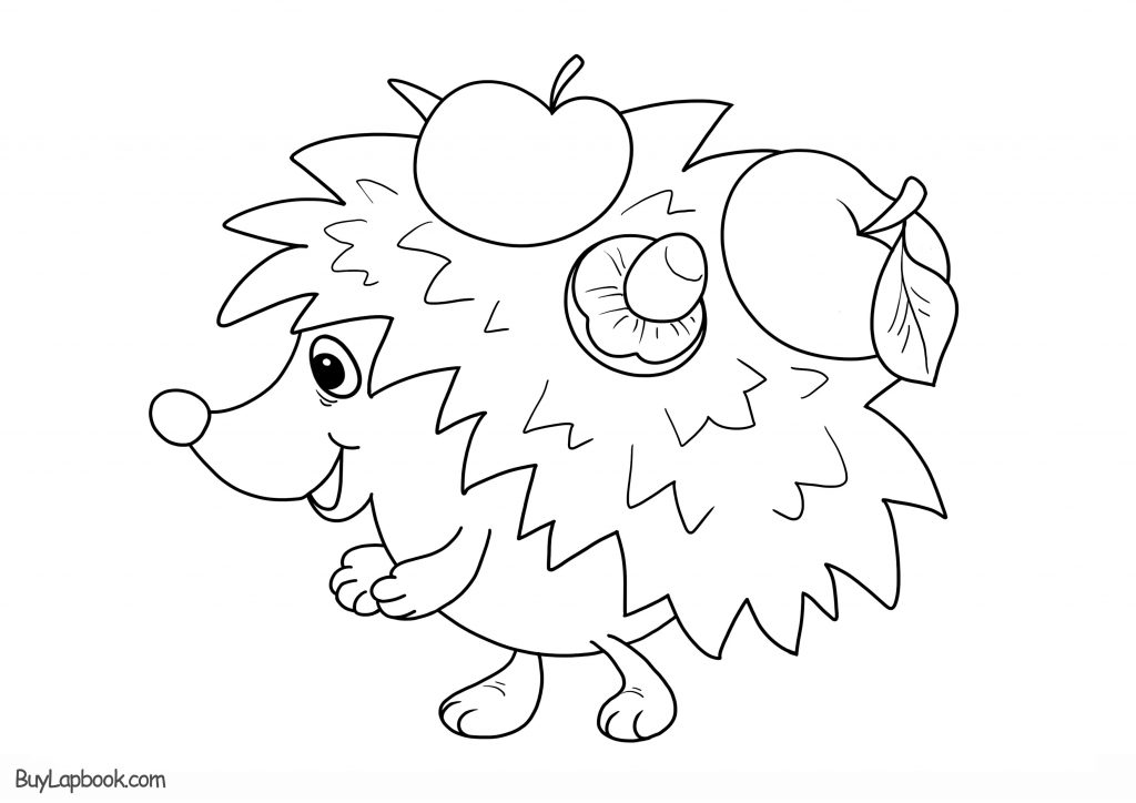 free hedgehog coloring pages hedgehogs free printable coloring and activity page for free hedgehog coloring pages