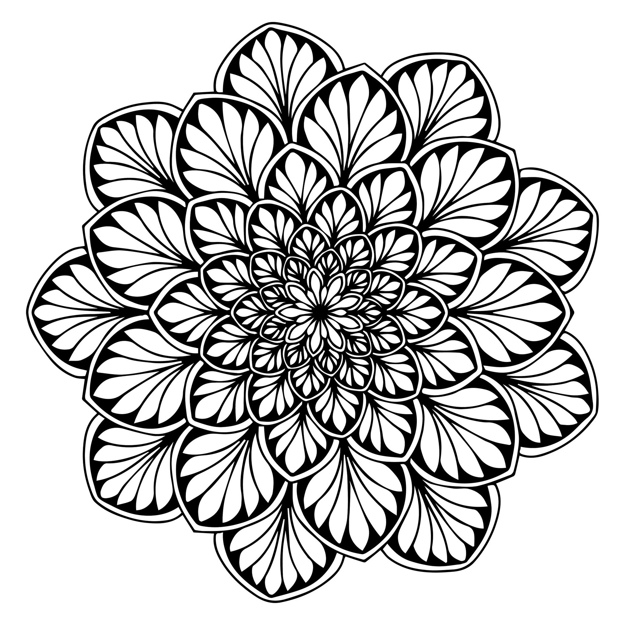free printable mandalas for adults mandala coloring pages for adults printable at getdrawings free for adults mandalas printable