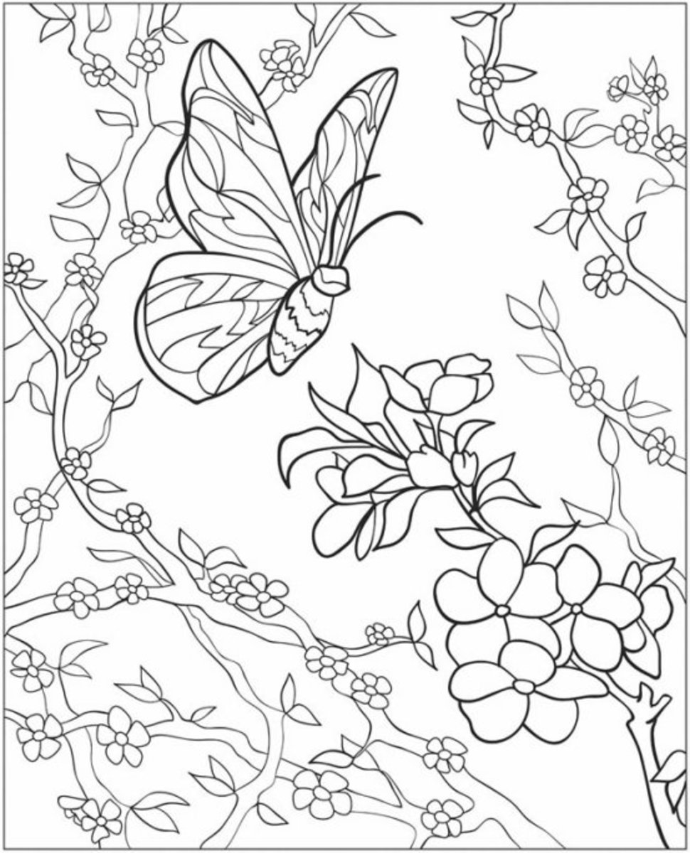 garden coloring page beautiful garden coloring page free printable coloring pages coloring page garden