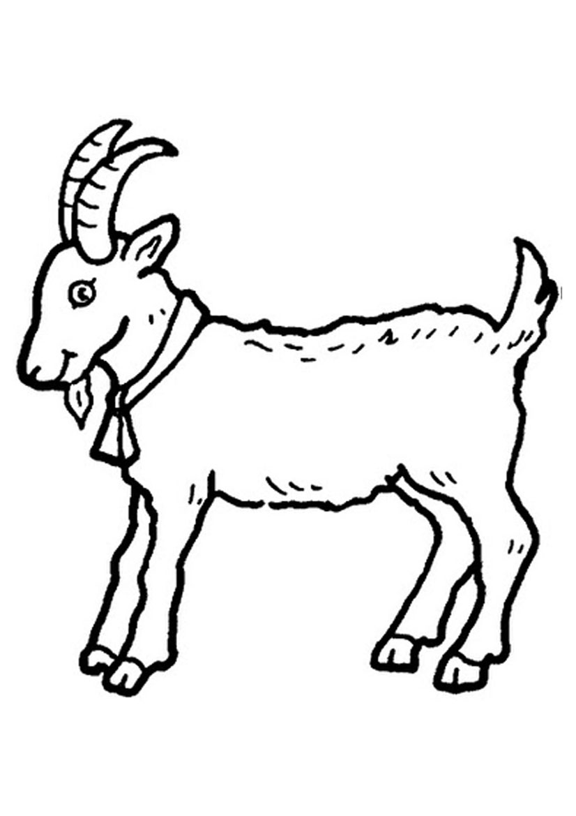 goat picture for colouring goat coloring pages to download and print kids goat colouring for picture