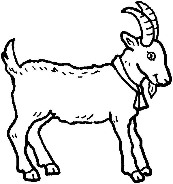 goat picture for colouring mountain goat wearing bell coloring pages color luna for picture colouring goat