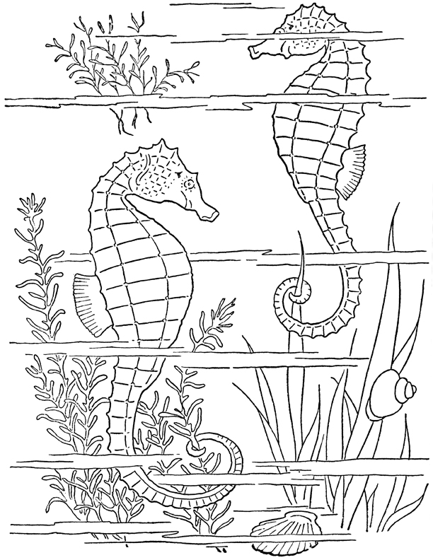 graphic art coloring pages koala coloring page free clip art coloring pages art graphic