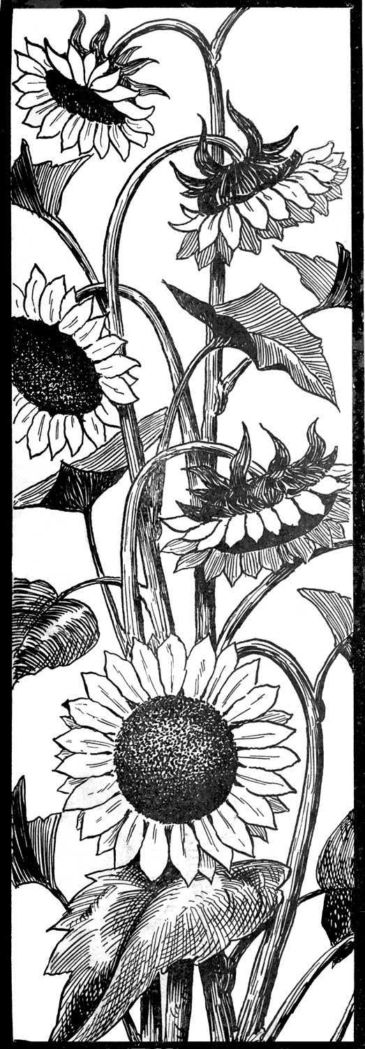 graphic art coloring pages request day sunflowers seahorse art nouveau frame big graphic pages coloring art