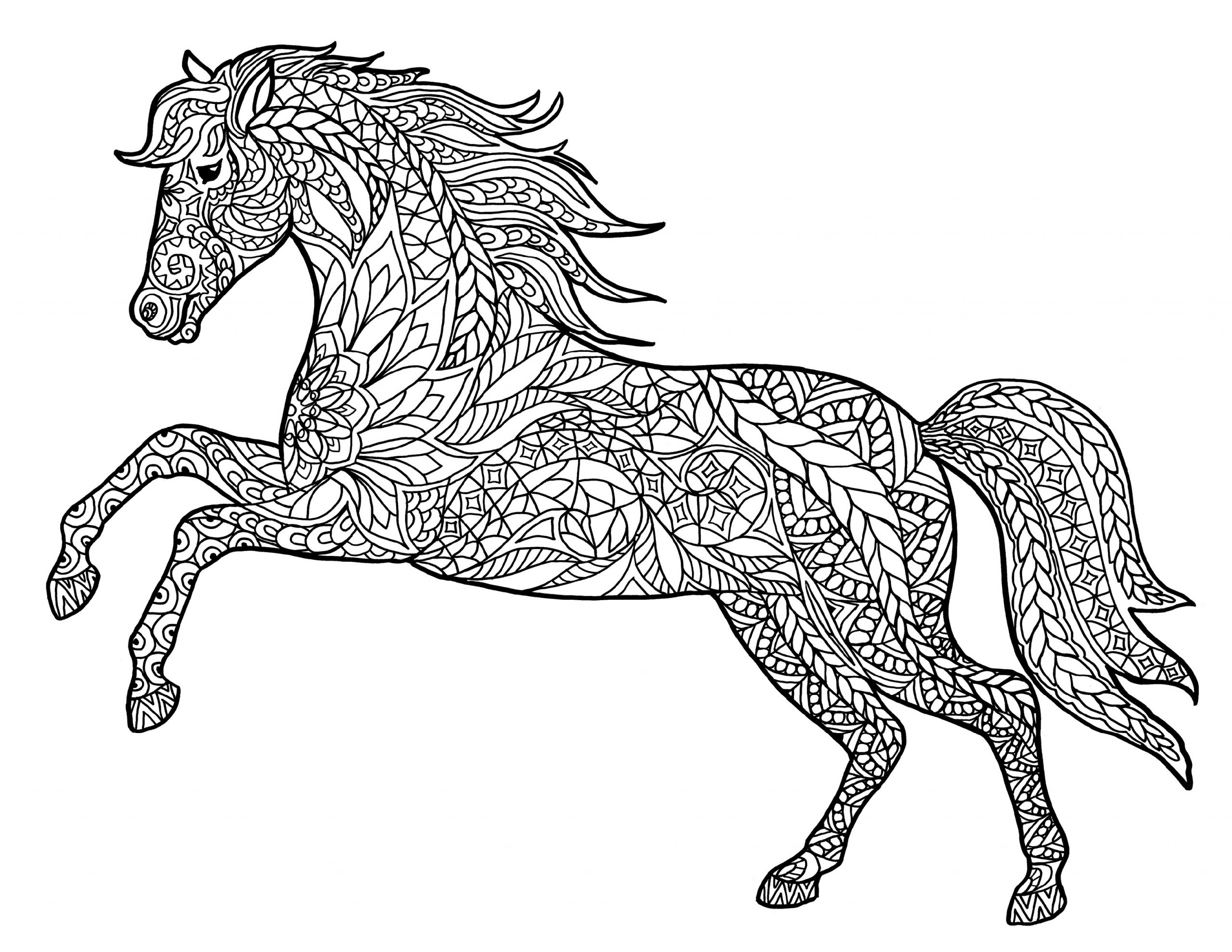 horse for coloring free and printable horse color pictures activity shelter coloring for horse