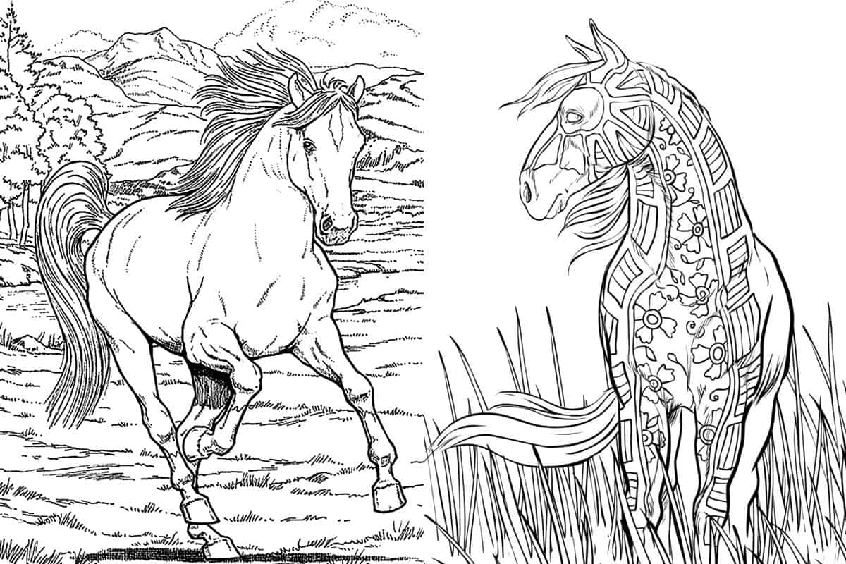 horse for coloring free printable realistic horse coloring pages coloring home horse for coloring
