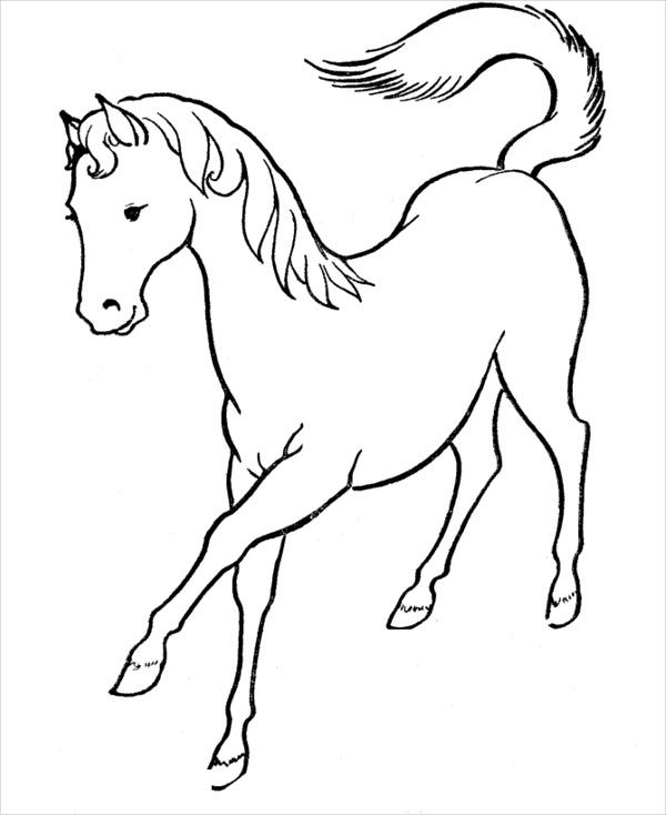 horse for coloring horse coloring pages preschool and kindergarten for coloring horse
