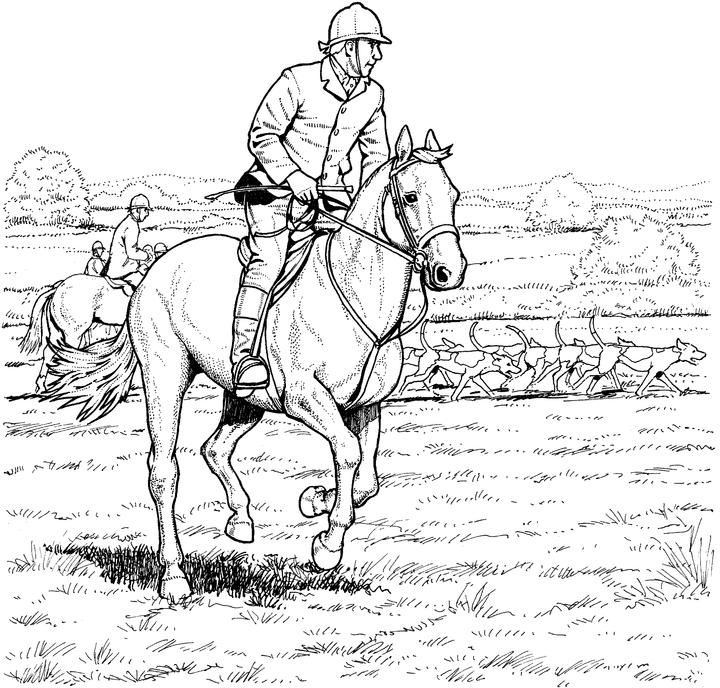 horse pages to color horse pages to color color pages horse to