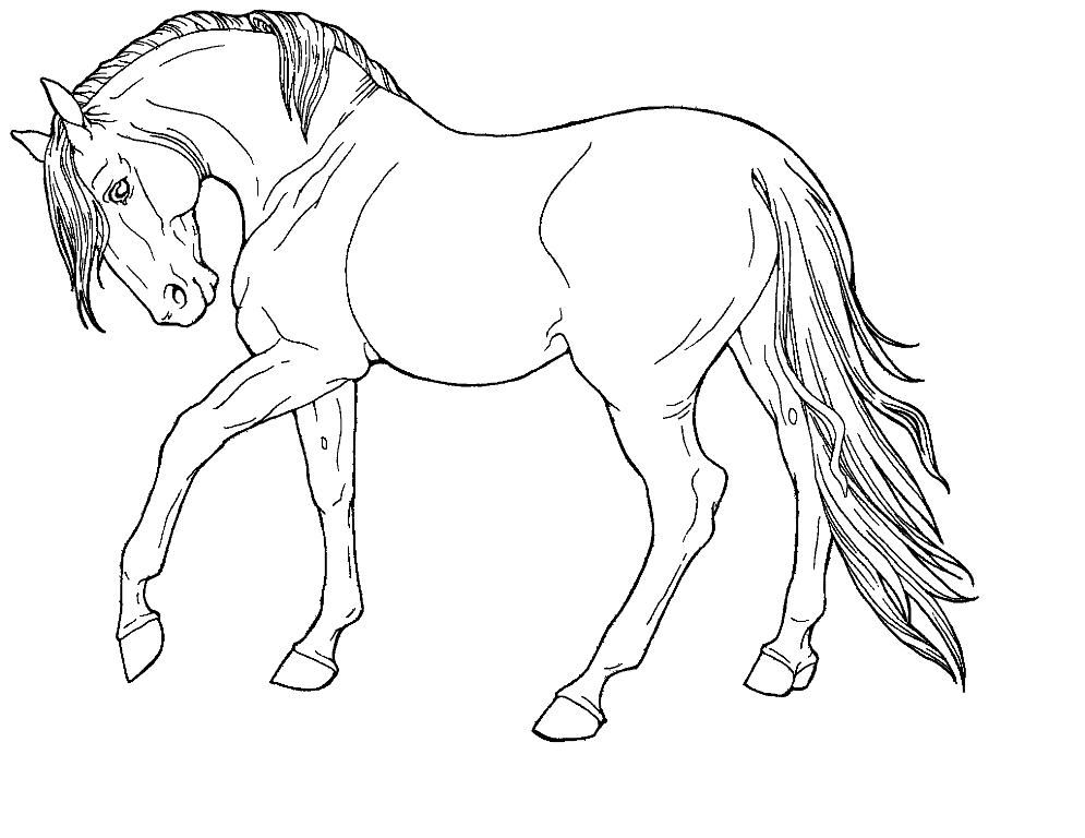 horse pictures to print out horse color sheet to print out in 2020 horse coloring pictures horse print to out