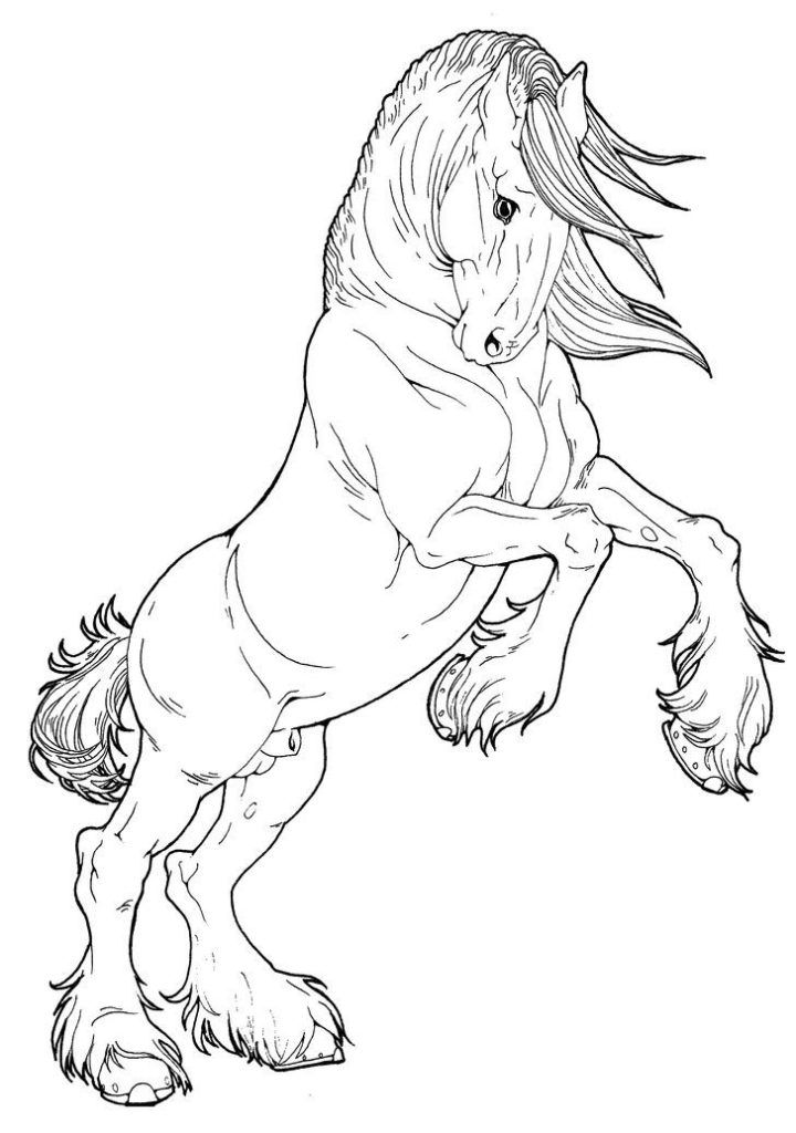 horse pictures to print out horse coloring pages horse coloring pages animal out to pictures horse print