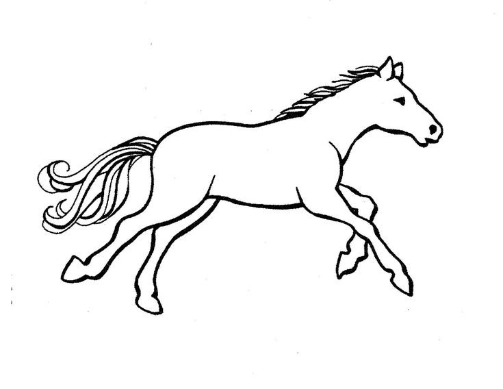 horse pictures to print out horse coloring pages pdf gtm ccamish zwierzęta to print out horse pictures