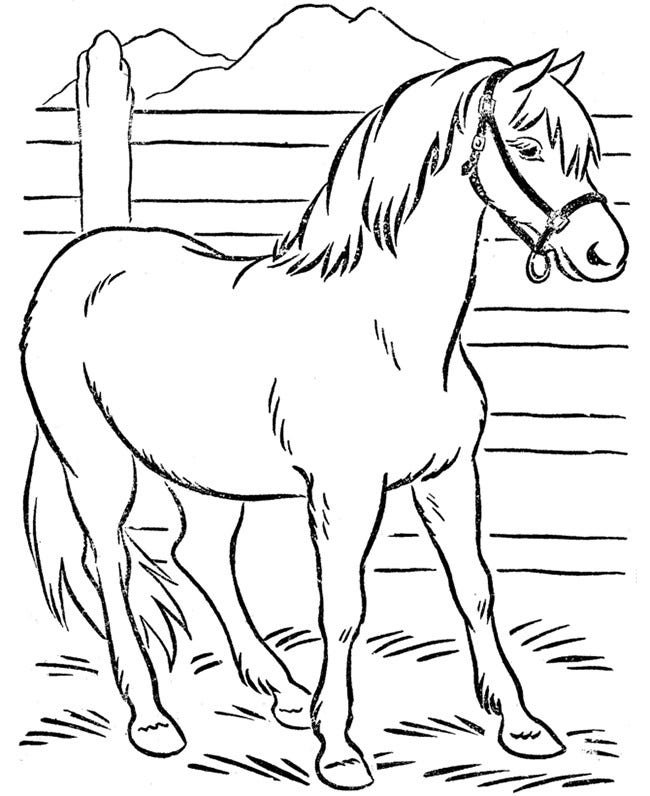 horse pictures to print out horse coloring pages to print coloring pages to print pictures horse out print to