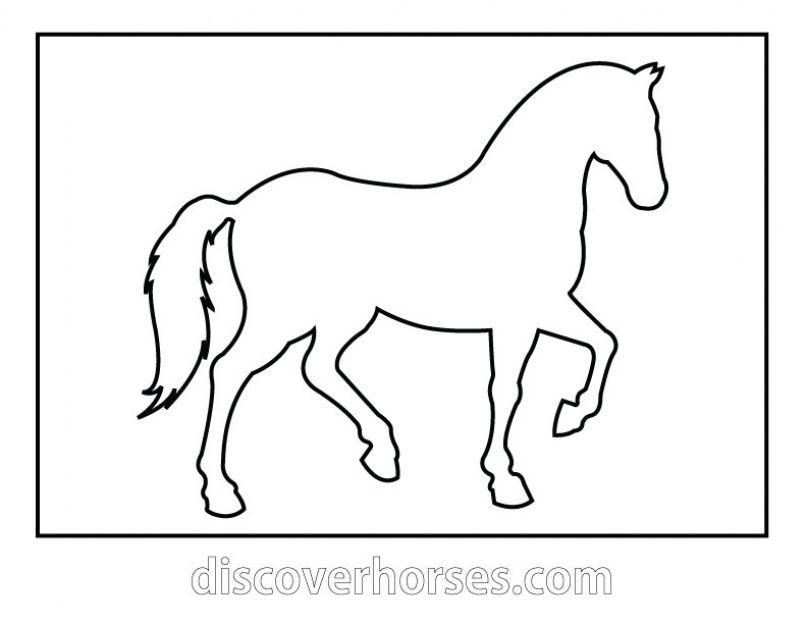 horse pictures to print out small horse coloring pages at getcoloringscom free print horse to pictures out