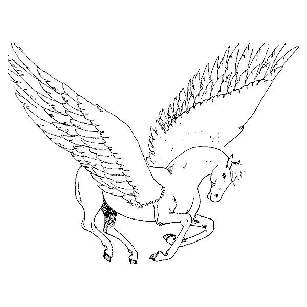 horse with wings coloring page isolated black outline galloping jumping pegasus on white horse with coloring wings page