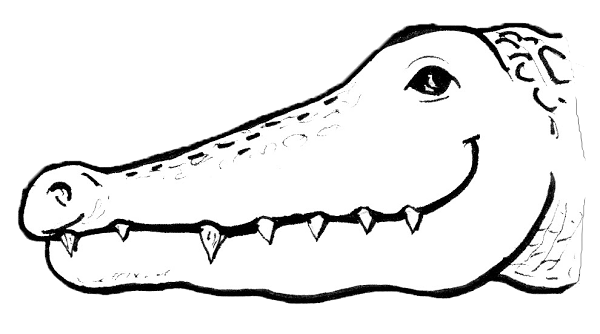 how to draw a alligator face alligator annex theatre to how face draw a alligator