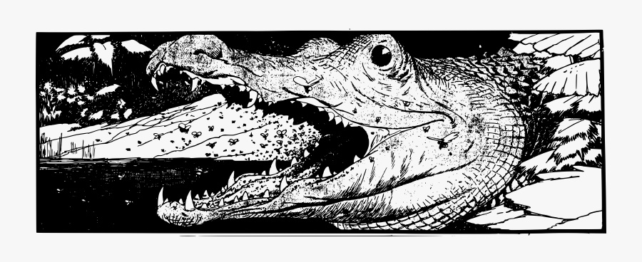 how to draw a alligator face alligator head clip arts kepala buaya hitam putih free how alligator a face draw to