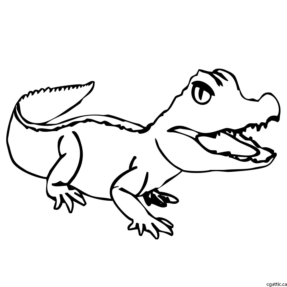 how to draw a alligator face cartoon alligator drawing in 4 steps with photoshop face a how draw alligator to