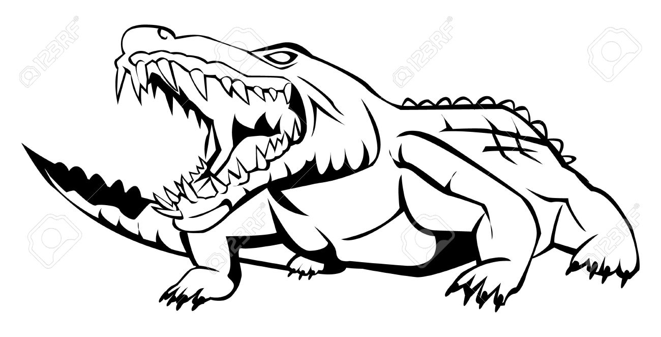 how to draw a alligator face cute alligator drawing at getdrawings free download face alligator how a to draw