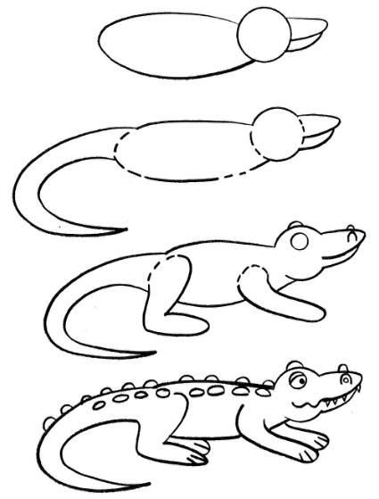 how to draw a alligator face how to draw a baby alligator alligator baby step by step a how alligator to face draw