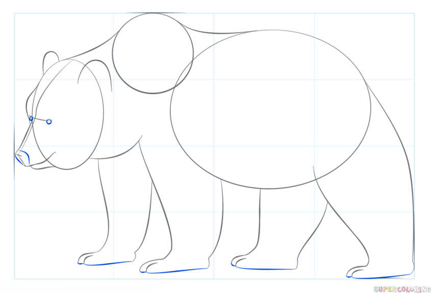 how to draw a bear step by step 322 best drawing step by step 2 images on pinterest how a how draw bear step step to by