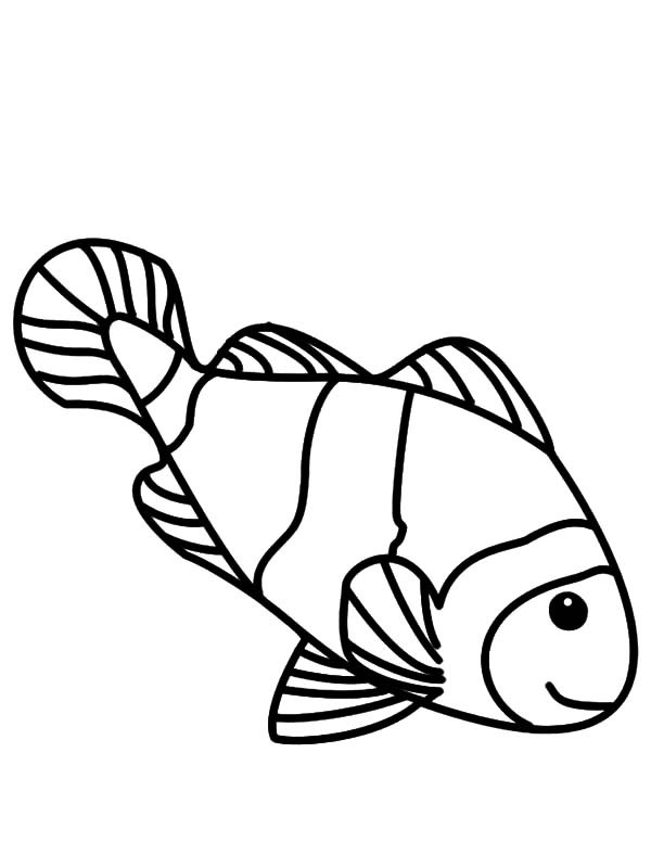 how to draw a clownfish how to draw a clownfish easy step by step for kids cute draw clownfish a to how